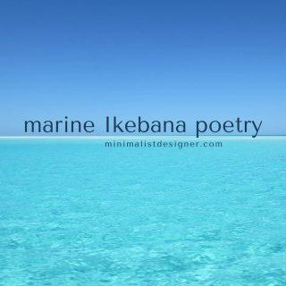 Friday is finally here :)  #marineikebanapoetry #marineikebana #blacksea #mareaneagra #poetry #poem #ikigai #ikebana #seashells #art #design #photobook #nautical #beach #artprint #gallery #sea #visualpoetry #visualart