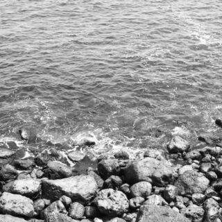 When we're young, we don't know how rich we are. It's only after we start paying for repairing this body part and extending the use of that body part that we start valuing life.  P.S. Photo taken by me in #constanța when I was a bit younger :)  #seaphotography #sea #seashell #blackandwhite #bwphotography #life #aging #illness #blacksea #mareaneagra #time #ephemera #dust #photography #constanta #constanța #youth #repair #disease #young #body